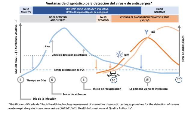grafica de PCR