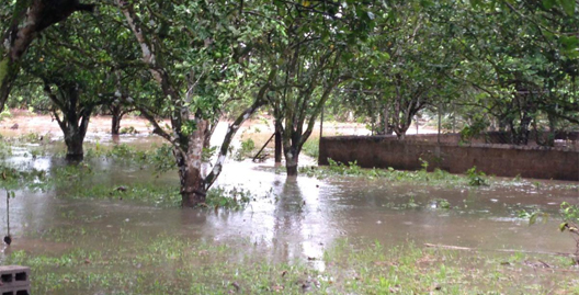 inunda12