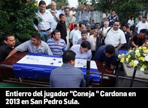 Coneja3