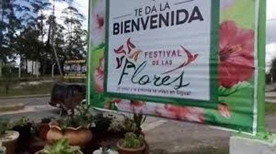 festival bienvenida