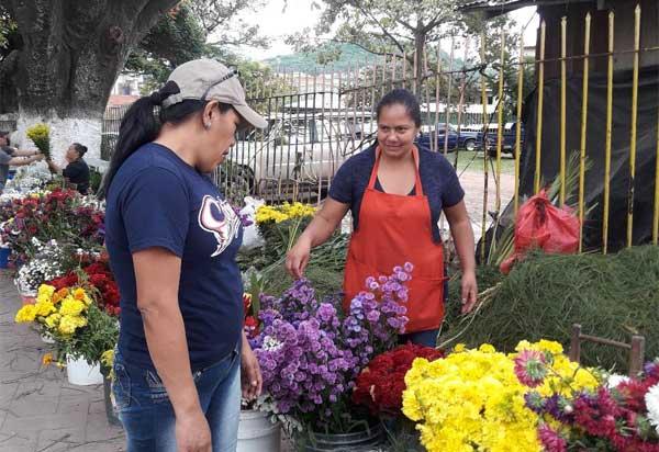 venta flores
