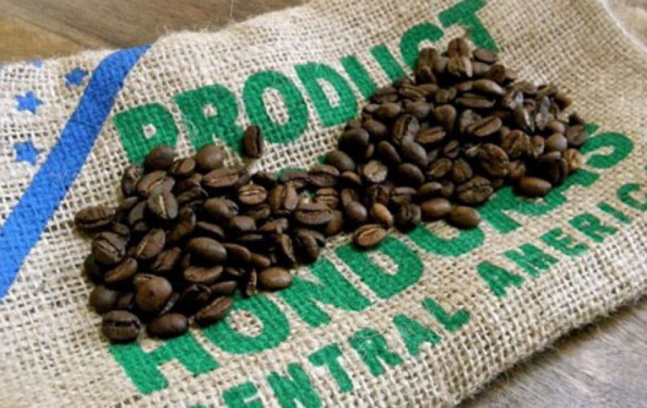 cafe saco pd 4