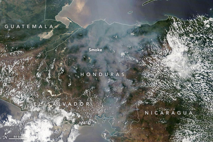 humo nasa